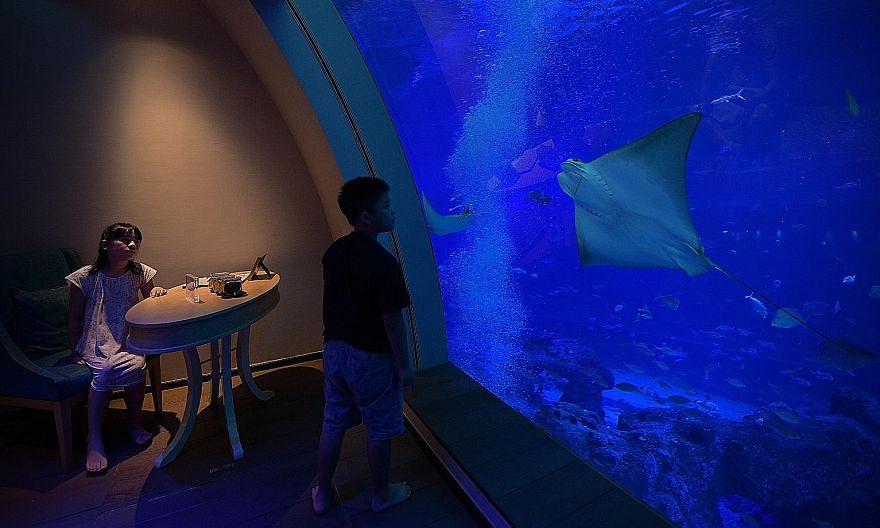 The bedroom at Ocean Suites has a giant window which looks out to the Open Ocean habitat of S.E.A. Aquarium, guaranteeing sights of 40,000 marine creatures. Some extras you can opt for with your suite include VIP passes for Resorts World Sentosa attr