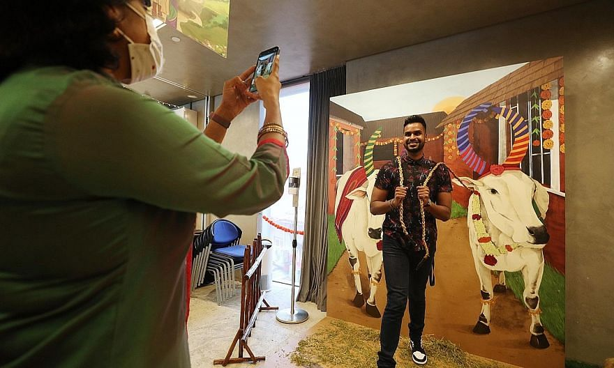 Visitors can pose at the Indian Heritage Centre's interactive photo booths, showcasing life-like paintings of cattle and rice farming, as part of the Pongal Day Out programme, which runs until Jan 17. Other physical events to mark the harvest festiva
