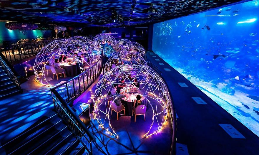 Resorts World Sentosa will be serving reunion dinner at its Aqua Gastronomy pop-up inside the S.E.A Aquarium, where all eight tables placed under lit pods have been taken up. A few tables outside the pods are still available.