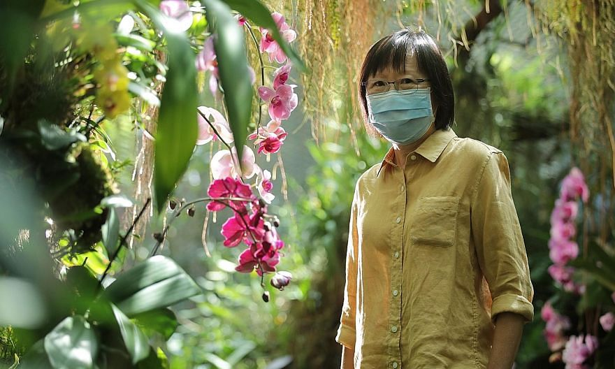 """Ms Andrea Kee, deputy director of the research and horticulture department, at Gardens by the Bay's Cloud Forest orchid display. She said: """"My younger colleagues will always request that I take a look at their work before they wrap up the installatio"""