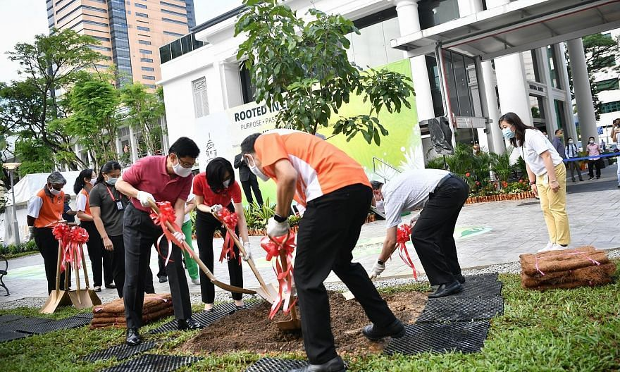 (Clockwise from far left) Deputy Prime Minister, Heng Swee Keat and Mrs Heng, as well as Health Minister Gan Kim Yong and Singapore General Hospital chief executive Kenneth Kwek, planting a longan tree yesterday at the hospital's new garden as it mar