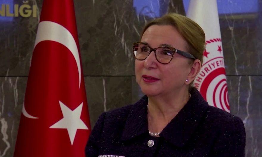 Turkey, Britain extend their free-trade deal