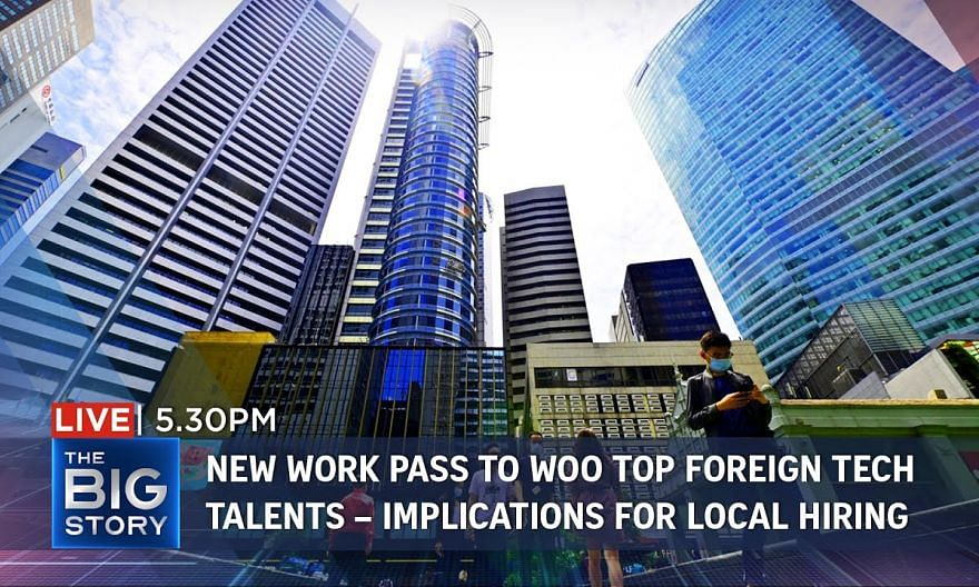 New work pass to woo top global tech minds – benefits, challenges for local talent | THE BIG STORY