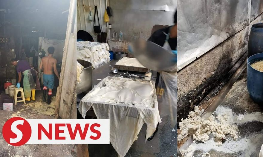 Tofu factory shut down after DBKL raid uncovers 'disgusting' conditions