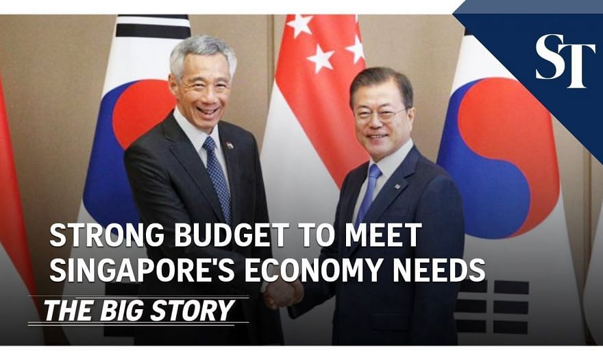 PM Lee: Budget suited to Singapore economy needs   THE BIG STORY   The Straits Times
