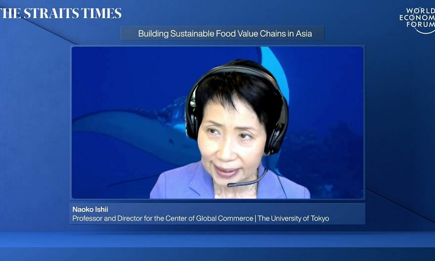Relook and rebuild food value chains to ensure sustainability: WEF panel