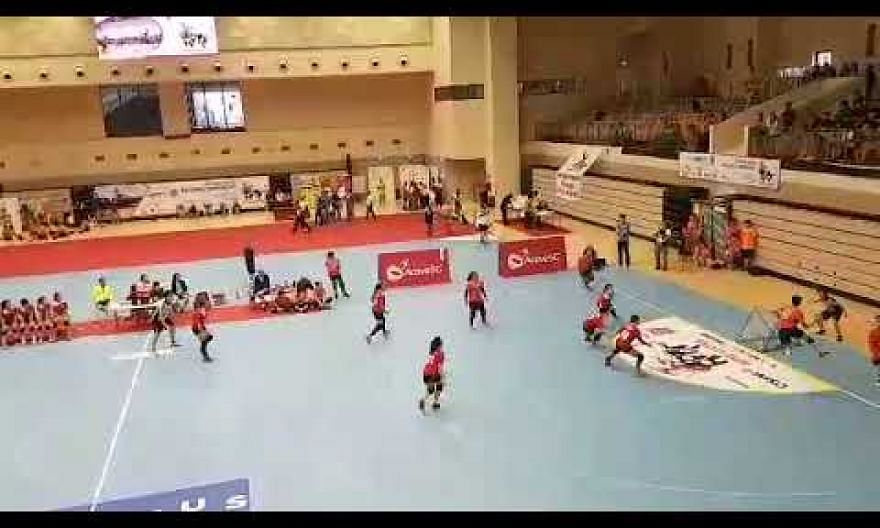 Singapore women lose to Chinese Taipei in 8th Asia-Pacific Tchoukball Championships final