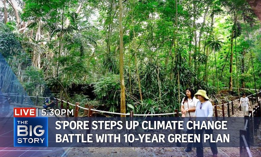 S'pore launches 10-year Green Plan, backed by 5 ministries | THE BIG STORY