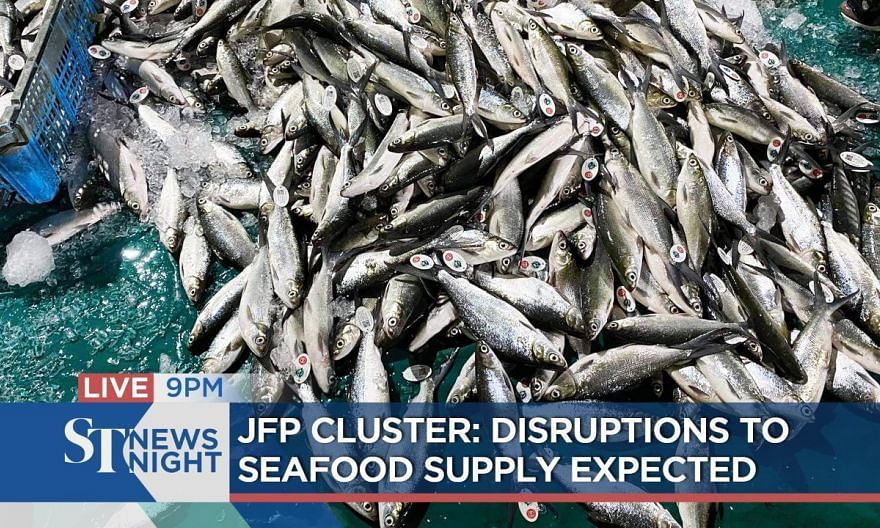 JFP Cluster: Disruptions to seafood supply expected | ST NEWS NIGHT