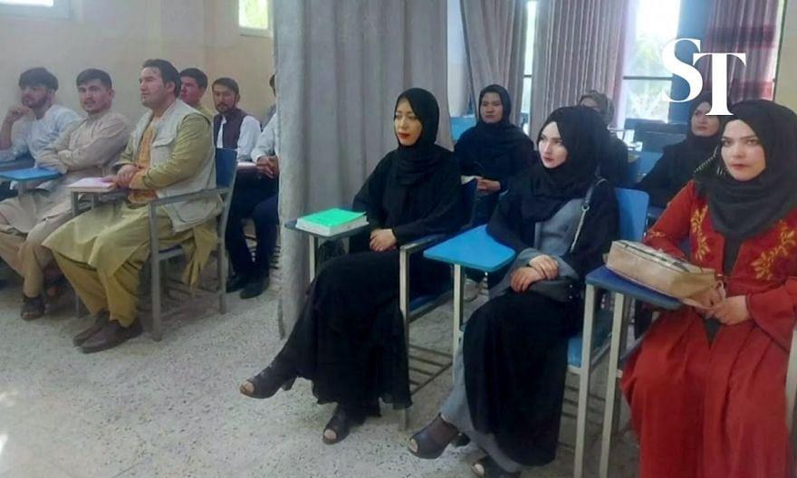 Taliban say women can study at university