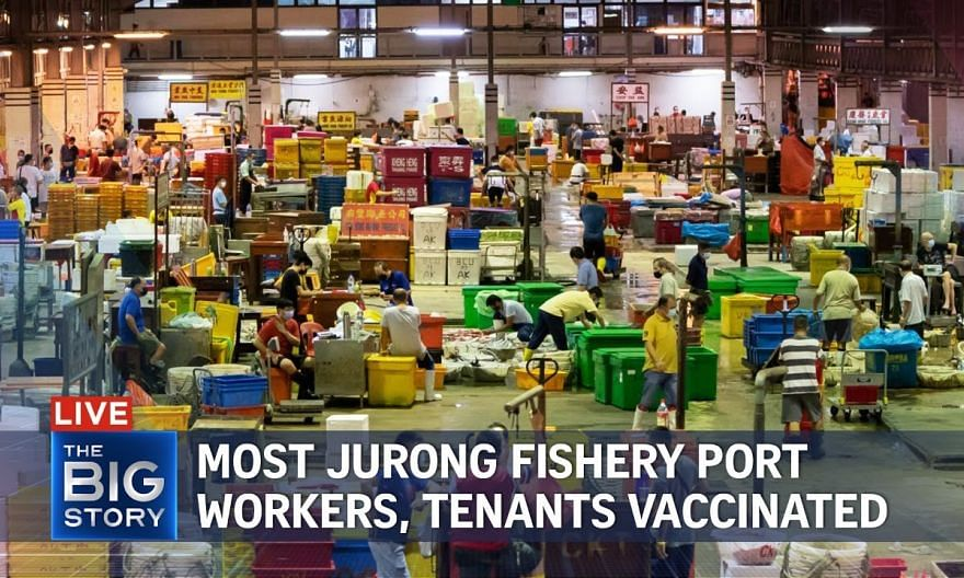 80% of Jurong Fishery Port workers, tenants fully vaccinated   THE BIG STORY