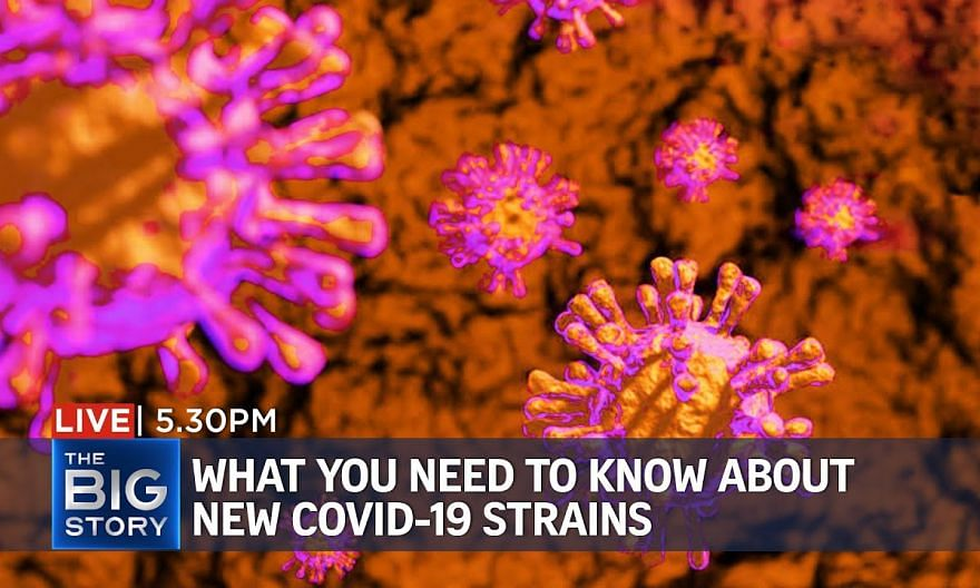 New, more contagious Covid-19 strains – experts divided on their effects   THE BIG STORY