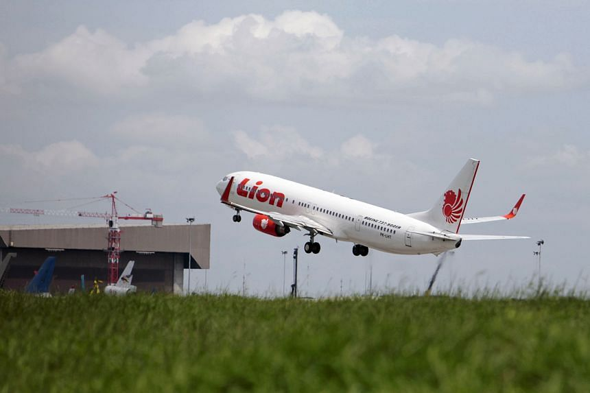 Lion Air and Indonesia AirAsia have until May 24 to hire other handling services before the investigation begins.