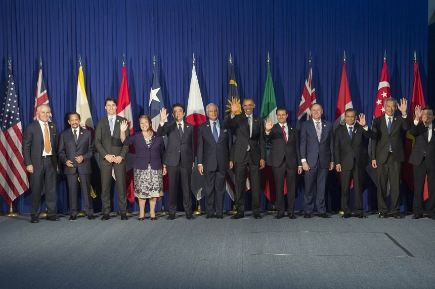 Trans-Pacific Partnership (TPP) leader pose for a photo ahead of the Apec Summit in Manila on Nov 18, 2015.