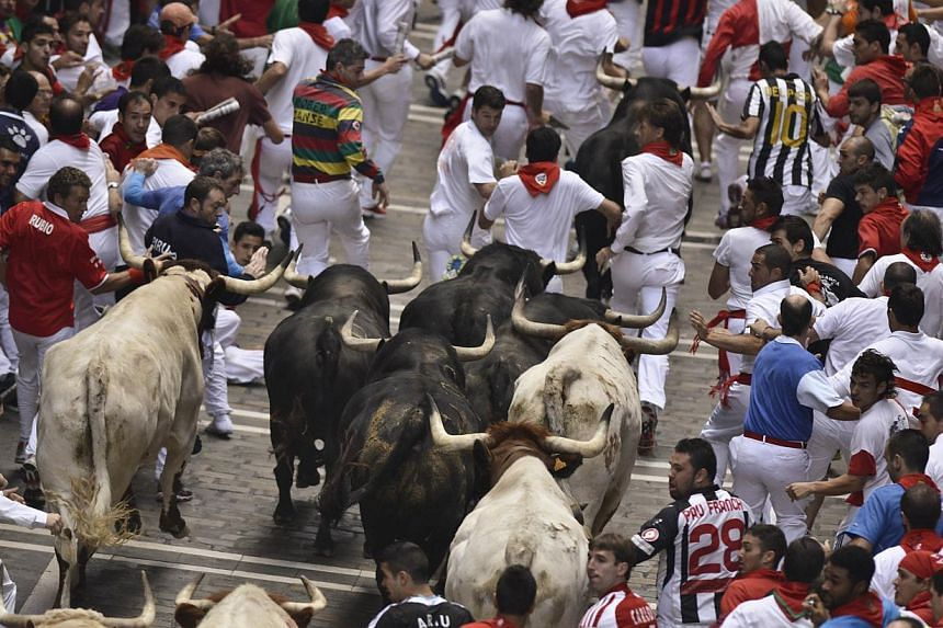 Participants run ahead Fuente Ymbror fighting bulls during the running of the bulls at the San Fermin festival, in Pamplona, Spain on Saturday, July 13, 2013. Dozens of people were trampled at Spain's San Fermin bull run on Saturday when they were tr
