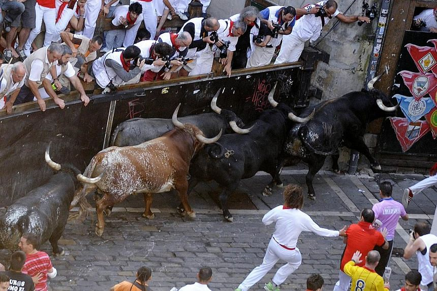Participants run in front of Miura's bulls during the last bull run of the San Fermin Festival in Pamplona, northern Spain, on Sunday, July 14, 2013. A 23-year-old Australian woman was gored in the chest on the final day of Spain's San Fermin week-lo