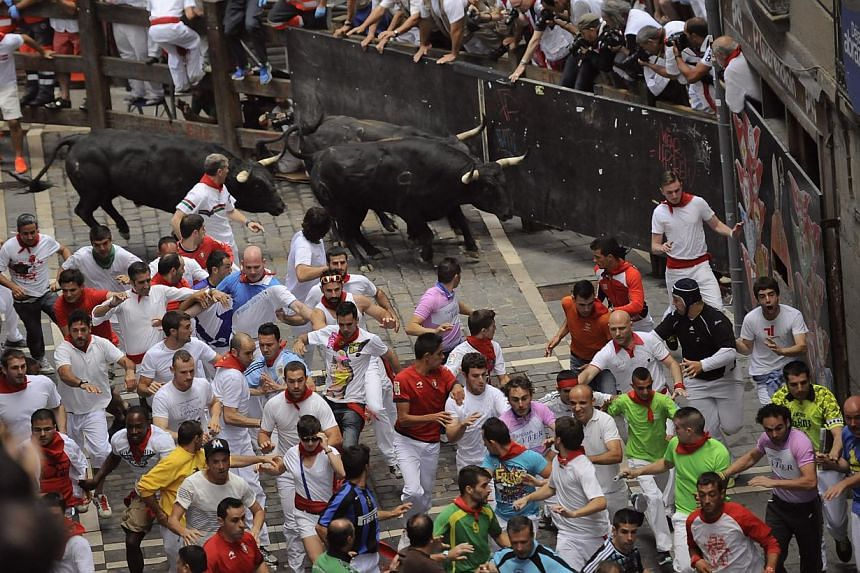 """A """"Fuente Ymbror"""" fighting bull runs behind participants during the running of the bulls at the San Fermin festival, in Pamplona, Spain on July 13, 2013. A 23-year-old Australian woman was gored in the chest on the final day of Spain's San Fermin wee"""