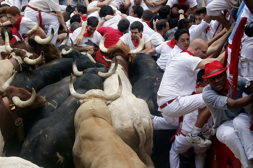Participants get trapped with Fuente Ymbro fighting bulls in a stampede at the entrance to the bull ring during the seventh running of the bulls of the San Fermin festival in Pamplona on July 13, 2013. A 23-year-old Australian woman was gored in the