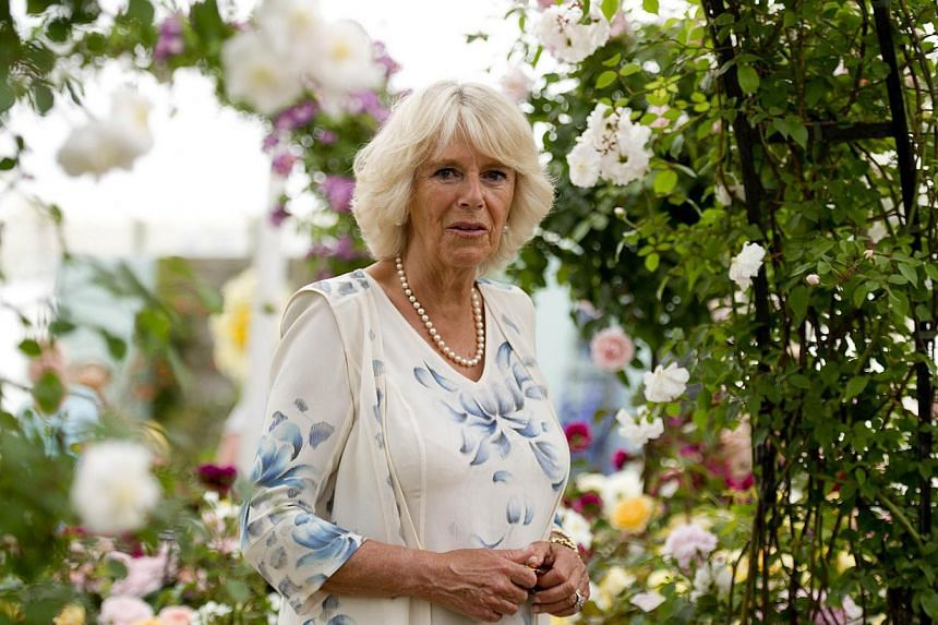 "Britain's Camilla, The Duchess of Cornwall, looks on during her visit to the flower show at Hampton Court Palace in East Molesey on July 10, 2013. Britain's Prince Charles joked on Monday that his son Prince William's baby was ""hopefully"" on the"