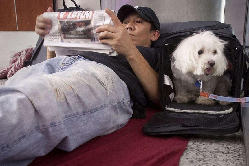 Stranded passenger Danny Nguyen and his dog Lucky wait as they spend the night on the floor of LaGuardia airport after his flight was cancelled when a Southwest Airlines 737 made an emergency landing in New York, on July 22, 2013.Se