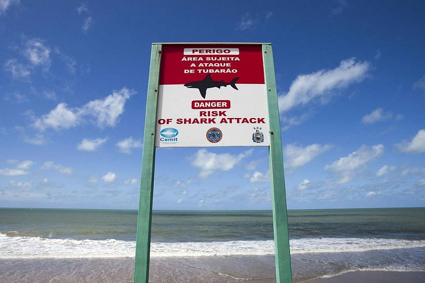 A sign warning of shark attacks is seen at Boa Viagem beach in Recife city on June 11, 2013.A young tourist died after being attacked by a shark as she swam off a beach in north-eastern Brazil, a hospital official said on Tuesday. -- FILE PHOTO