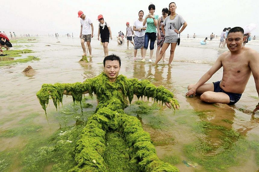 A man covers himself with algae as he poses for photographs on a beach in Qingdao, Shandong province on Tuesday, July 23, 2013. -- FILE PHOTO: REUTERS