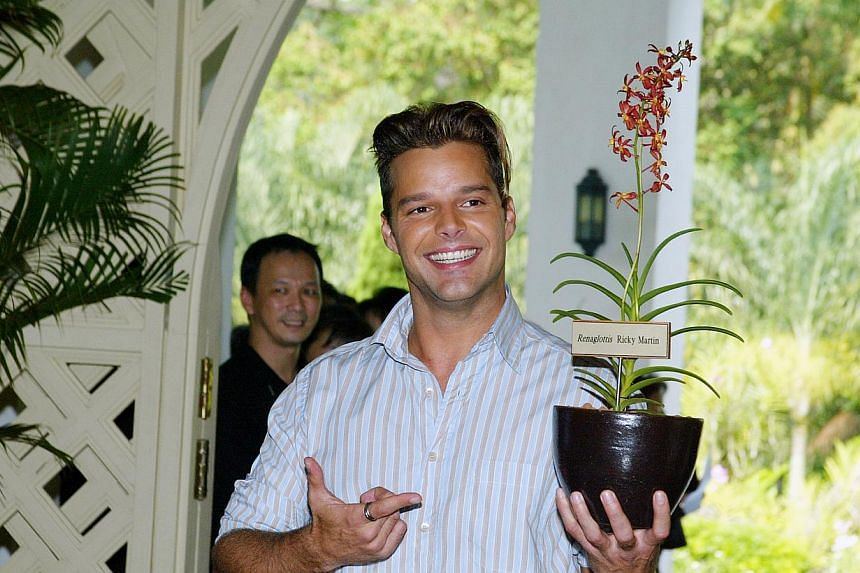 Puerto Rican star Ricky Martin holds an orchid, named Renaglottis Ricky Martin, to commemorate his visit to the National Orchids Gardens. -- FILE PHOTO: S'PORE TOURSIM BOARD National Orchids Gardens