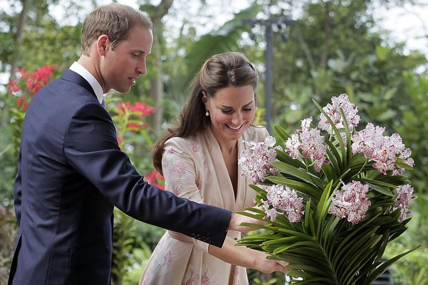 Prince William and his wife Catherine Middleton interact with Vanda William Catherine, a white and purple orchid named in their honour at the National Orchid Garden of the Singapore Botanic Gardens on Sept 11, 2012. -- ST FILE PHOTO: KEVIN LIM