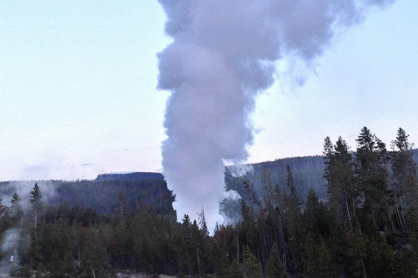 Steamboat Geyser, in Yellowstone National Park's Norris Geyser Basin in Wyoming, erupts on Wednesday, July 31, 2013. -- PHOTO: AP
