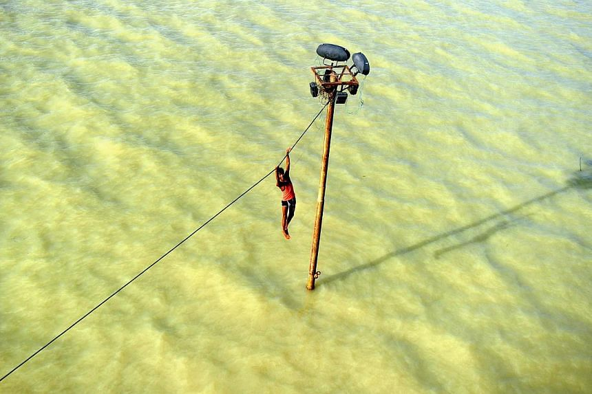 An Indian youth dangles from a power line before diving into the floodwaters of an overflowing Ganges river in Allahabad on Tuesday, Aug 6, 2013. -- PHOTO: AFP