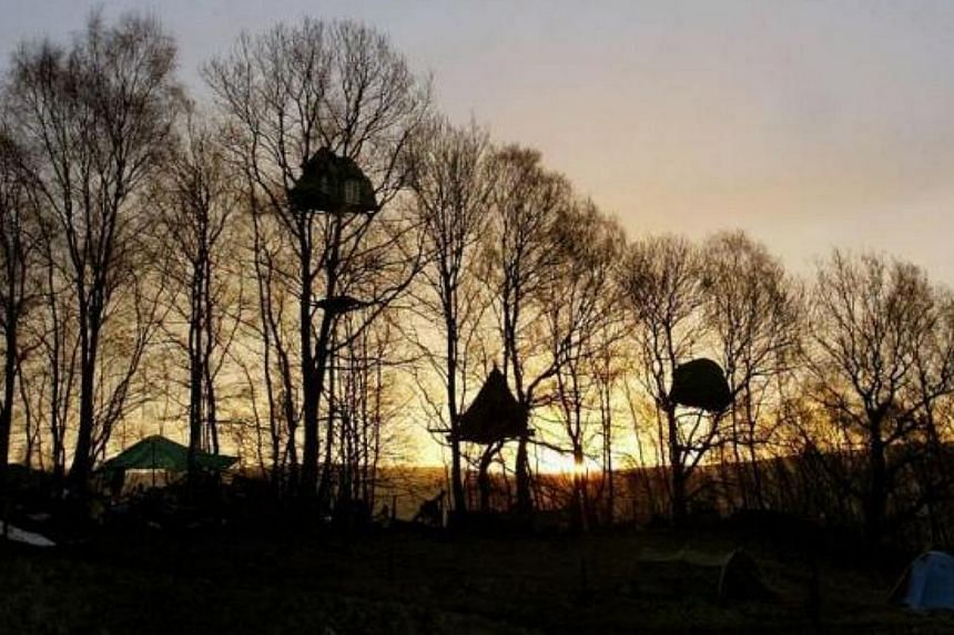 Treehouses are seen on the Nine Ladies site in Stanton Lees, Derbyshire, northern England on Mar 25, 2004. -- FILE PHOTO: REUTERS