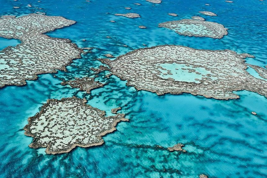 This undated handout picture released on Aug 1, 2013 by the Australian Institute of Marine Science shows an aerial view of the Great Barrier Reef off the coast of Australia. Australia's navy said on Friday that it had found four bombs dropped by US f