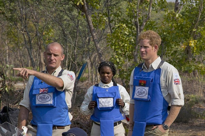 """Halo provincial manager Gerhard Zank (from left), section leader Maria Ilda da Piedade andBritain's Prince Harrydiscuss clearance techniques.Britain's Prince Harryhas a """"bee in his bonnet"""" about some countries' failure to remo"""