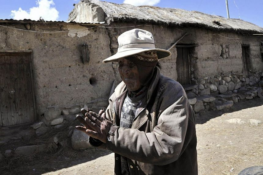 Bolivian indigenous farmer Carmelo Flores, who could be the oldest person to have ever lived, attributes his longevity to quinoa grains, riverside mushrooms and around-the-clock chewing of coca leaves. -- FILE PHOTO: AFP