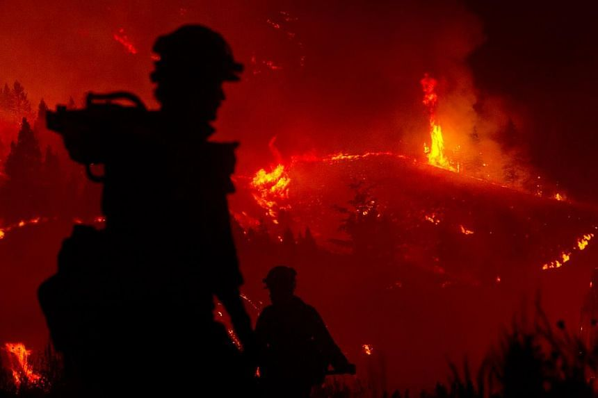 Firefighters light a back burn near Pine, Idaho while fighting the Elk fire Wednesday Aug 14, 2013. Firefighters mounted on Sunday an all-out ground and air attack on an Idaho wildfire that has forced the evacuation of some 2,250 homes and threatened