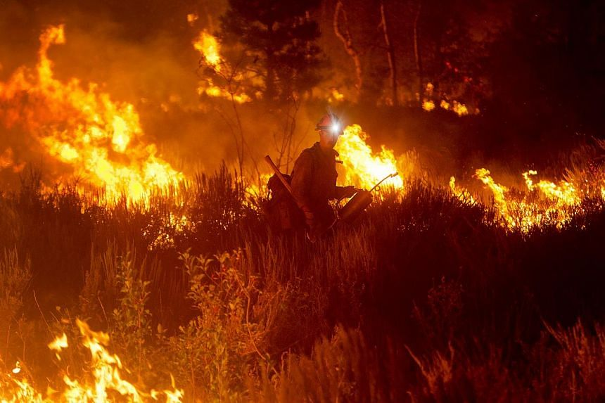 Firefighters light a back burn near Pine, Idaho while fighting the Elk fire Wednesday Aug. 14, 2013. Firefighters mounted on Sunday an all-out ground and air attack on an Idaho wildfire that has forced the evacuation of some 2,250 homes and threatene