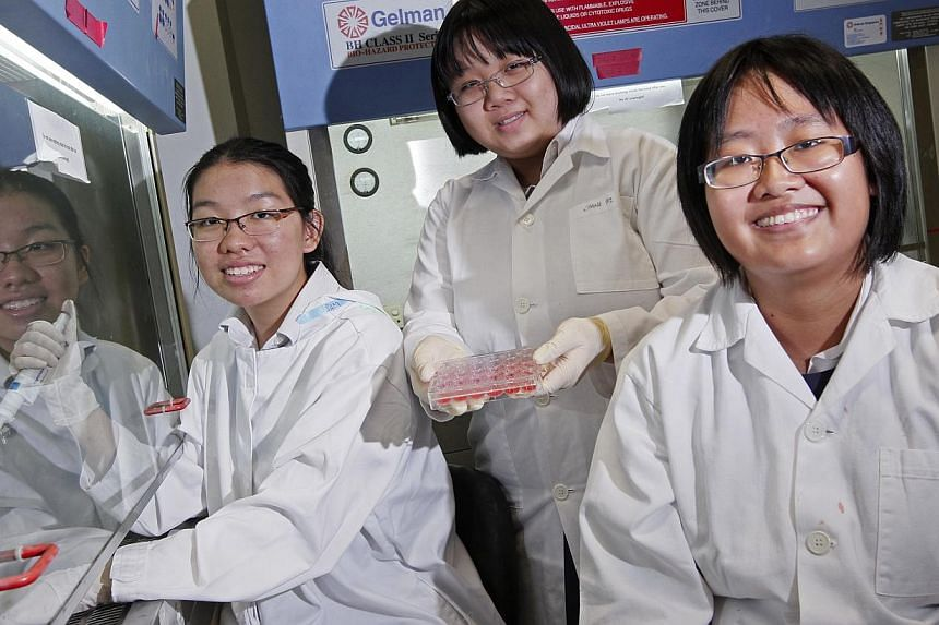 Raffles Girls' School students (from left) Samantha Kwok, 16, Tricia Lim, 15, and Kang Yi Xi, 16, will present their proposal on a treatment for liver inflammation to panellists, including Nobel laureates.