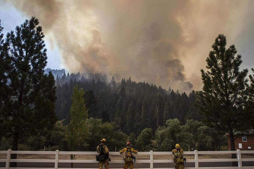 Firefighters monitor the edge of the Rim Fire as it burns near Berkeley Camp near Buck Meadows, California, on Aug 23, 2013. -- PHOTO: REUTERS