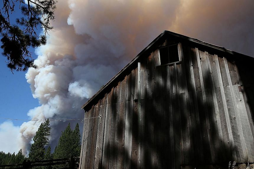 A Tuolumne County firefighter mops up hot spots from a back fire while battling the Rim Fire at Camp Mather on Aug 23, 2013 near Groveland, California. -- PHOTO: AFP