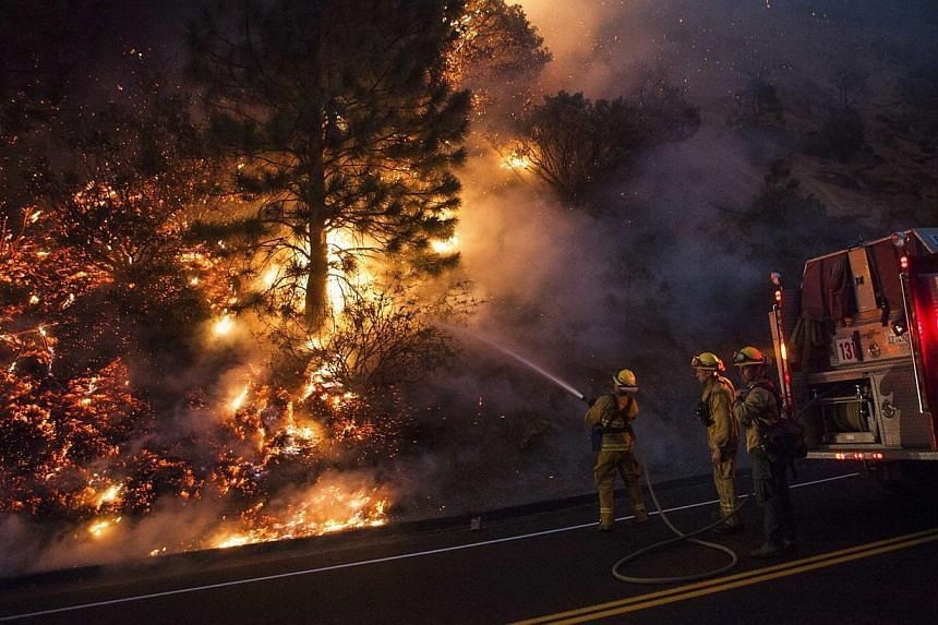 Firefighters work to prevent the Rim Fire from jumping Highway 120 near Buck Meadows, California, on Aug 24, 2013. A fast-moving wildfire on the edge of Yosemite National Park has forced the closure of two more areas of the park, but an official said