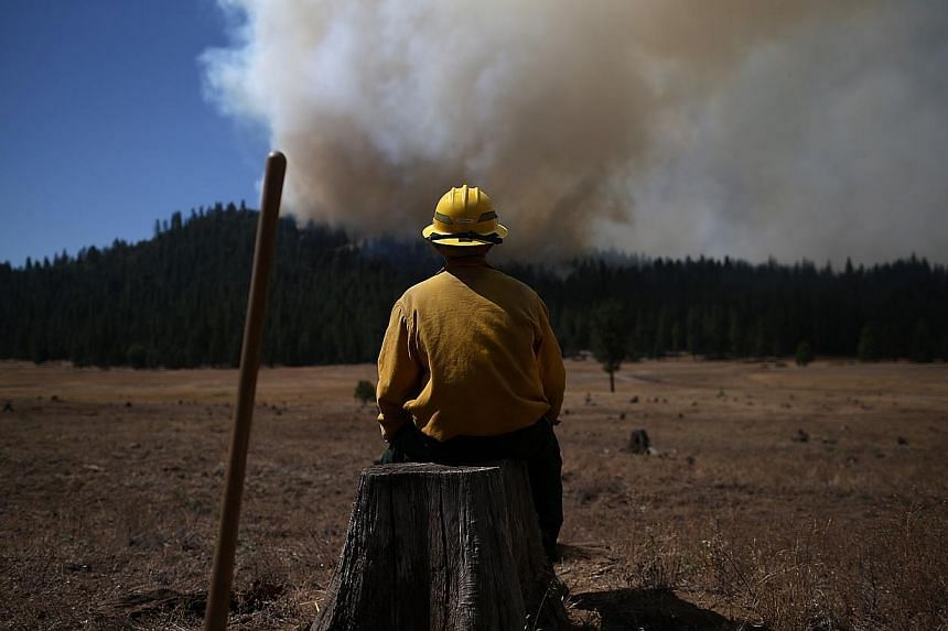 US Fish and Wildlife Service firefighter Corey Adams sits on a tree stump as he monitors the Rim Fire on Aug 25, 2013 near Groveland, California. The Rim Fire continues to burn out of control and threatens 4,500 homes outside of Yosemite National Par