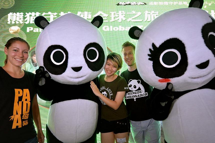 Panda ambassadors (from left) Ms Melissa Katz, 25, Ms Erica Chen, 27 and Mr Jerome Pouille, 32, at the Panda enclosure at the River Safari with the Kai Kai and Jia Jia panda mascots. Three global panda ambassadors, giving free guided tours and intera