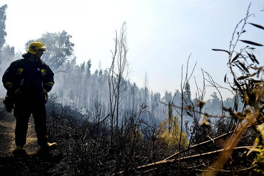 A firefighter watches a burnt area after a wildfire in Paredes near Oliveira de Frades, central Portugal on Tuesday, Aug 27, 2013. Firefighters and local residents struggled on Tuesday to tackle raging wildfires that have consumed large swathes of fo
