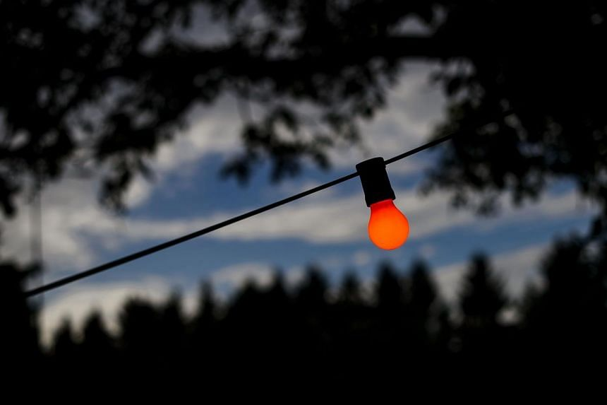 A coloured lamp is illuminated at the opening day of Switzerland's first sex drive-in on Aug 26, 2013, in Zurich, which is aiming to get prostitution off the city streets.The sex drive-in opened for business on Monday to a big fanfare, but few