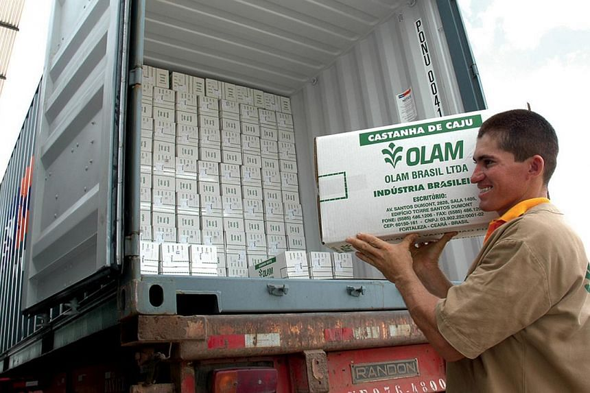 An undated handout photograph shows an Olam International Ltd employee loading a truck with boxes of cashew nuts for export, in Brazil, provided to the media on Dec 5, 2008. The private sector arm of the World Bank has approved a US$120 million (S$15