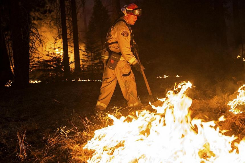 Sacramento Metropolitan firefighter John Graf works on the Rim Fire line near Camp Mather, California, on Monday, Aug 26, 2013. The wildfire threatening Yosemite National Park grew on Tuesday to become the seventh biggest ever in California. -- FILE