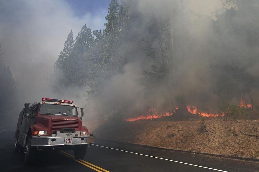 A fire truck drives past burning trees as firefighters continue to battle the Rim Fire near Yosemite National Park, California, on Monday, Aug 26, 2013. The wildfire threatening Yosemite National Park grew on Tuesday to become the seventh biggest eve