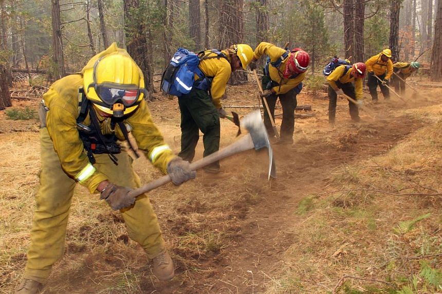 A fire crew digs a fire line near Yosemite National Park in this photo made on Sunday, Aug 25, 2013, and released by the United States Forest Service on Aug 27. The wildfire threatening Yosemite National Park grew on Tuesday to become the seventh big