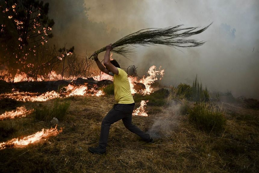 A local tries to extinguish a wildfire in Caramulo, central Portugal on Thursday, Aug 29, 2013. Five Portuguese mountain villages were evacuated overnight as forest fires intensified in the country's north and centre, officials said. -- PHOTO: AFP