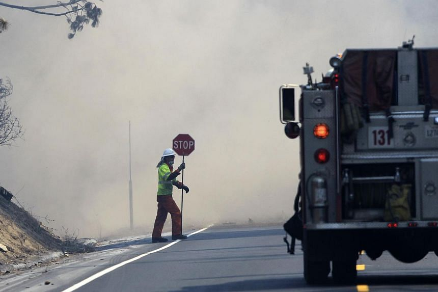 Dust from a tree felled by firefighters rises over Highway 120 at the Rim Fire just outside of Yosemite National Park, California, on Aug 28, 2013. One of the largest California wildfires on record roared deeper east into Yosemite National Park on Tu